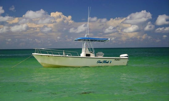 Enjoy Fishing In Fort Myers, Florida On 25' Parker Boat