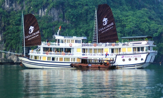 Halong Viola Cruise