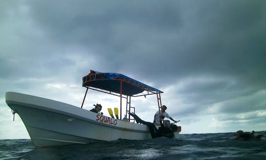 Dive Boat In Quintana Roo