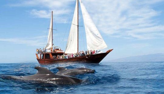 Sailboat Trips In Costa Adeje