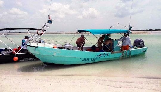 Boat Whale Shark Tour 'julia' In Holbox Island
