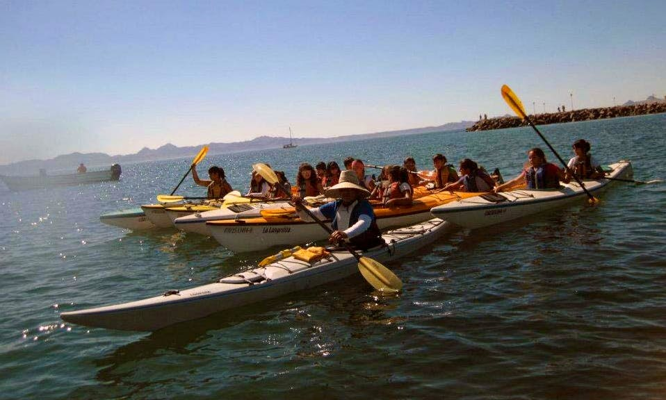 Single and Double Kayak Rental in Loreto
