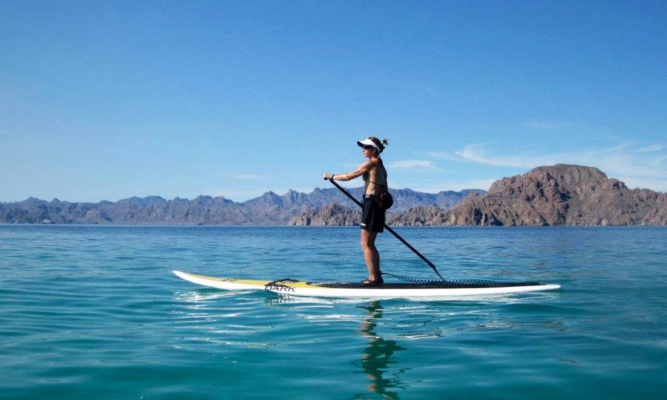 Stand Up Paddleboard Rental in Loreto