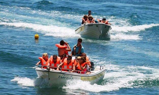 Boat Trips In Lagoa