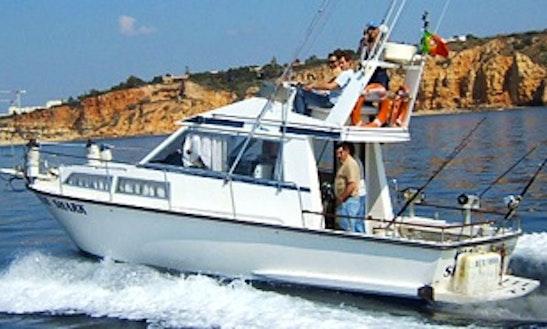 Doqueve 900-fly Boat Game Fishing Charter In São Sebastião