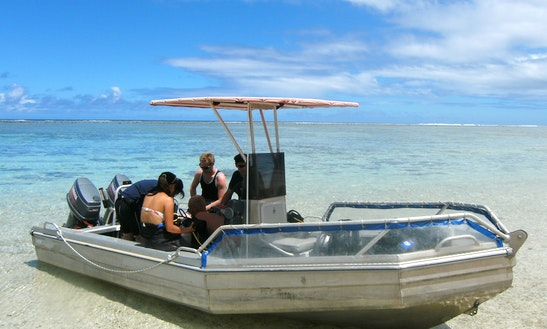 Guided Dive Trips In Rarotonga
