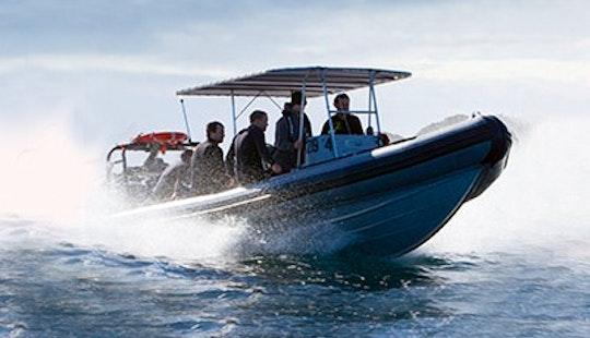 Dive Boat In Narooma