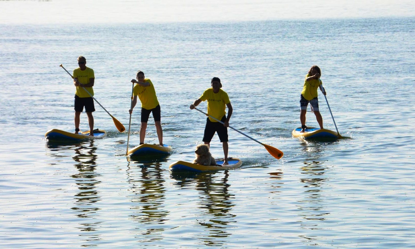 SUP Rental, Lessons, Tours and Yoga in Quarteira