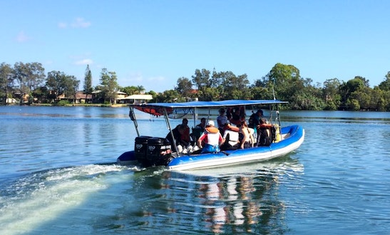 'blue Juice 1' Diving Trips & Padi Courses In Tweed Heads South