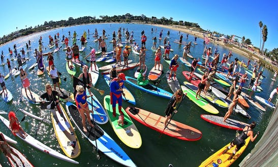 Stand Up Paddleboard Mini Lesson In Rose Bay