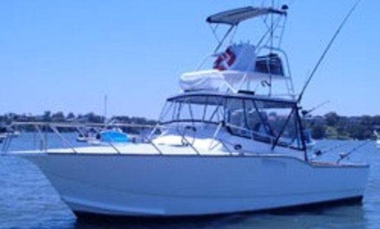 Go Fishing With 40' Fishing Yacht For 14 People In North Arm Cove, Australia