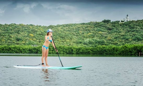 Stand Up Paddleboard Rental In Fajardo, Puerto Rico