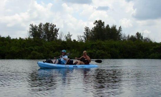 Double Kayak Rental & Tours In Siesta Key, Florida