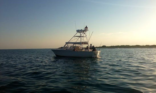 32' Atlantic Open Express Fishing Charter For 6 People In Cape Canaveral, Florida