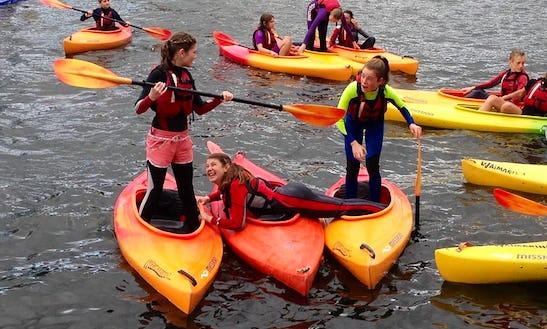 Exciting Kayaking Trip In Tauranga, New Zealand