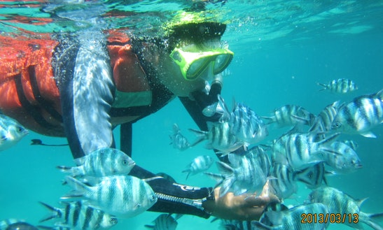 Snorkeling Tour On The Crystal Water Of South Bali, Indonesia