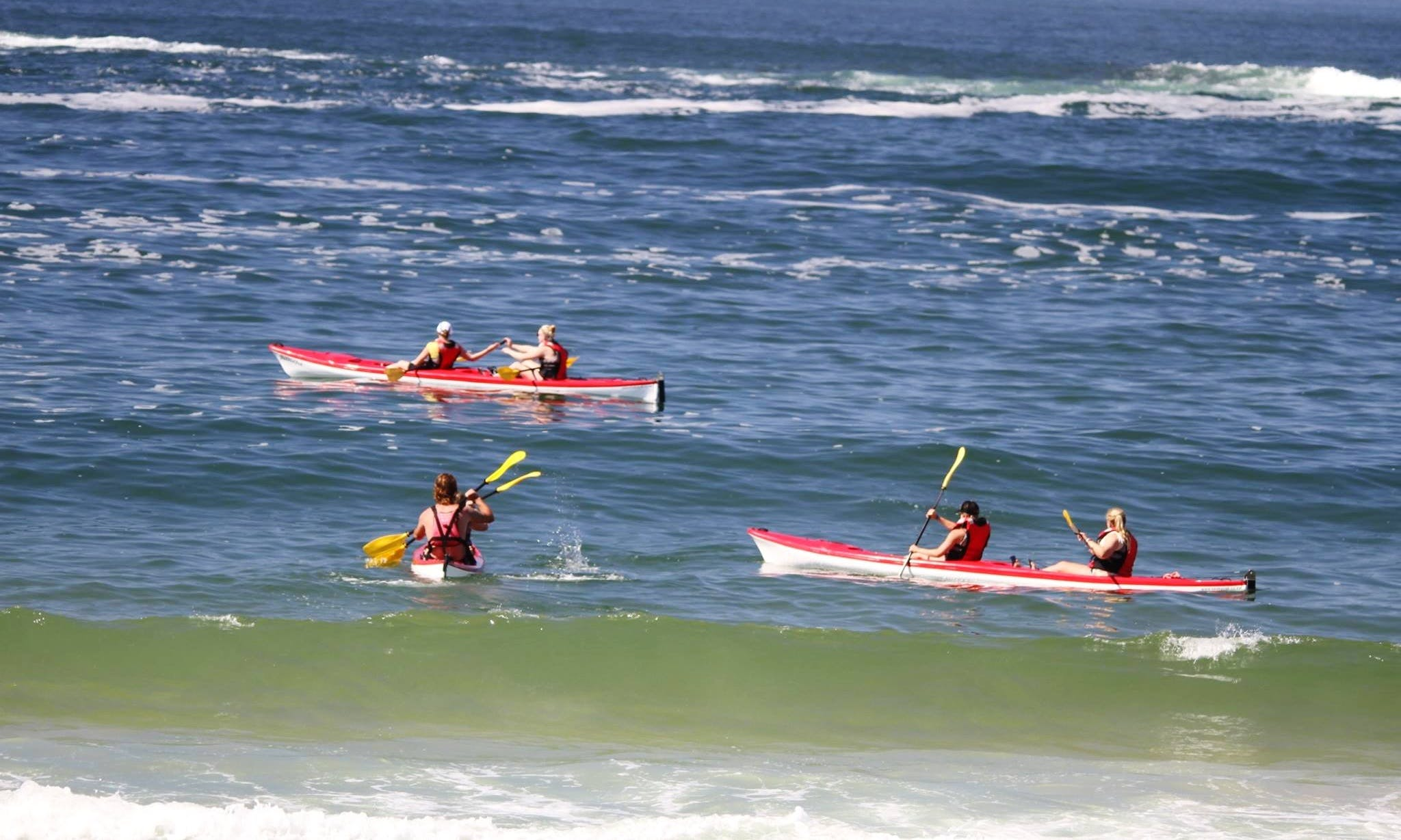 Sea Kayaking Guided Trips in Plettenberg Bay
