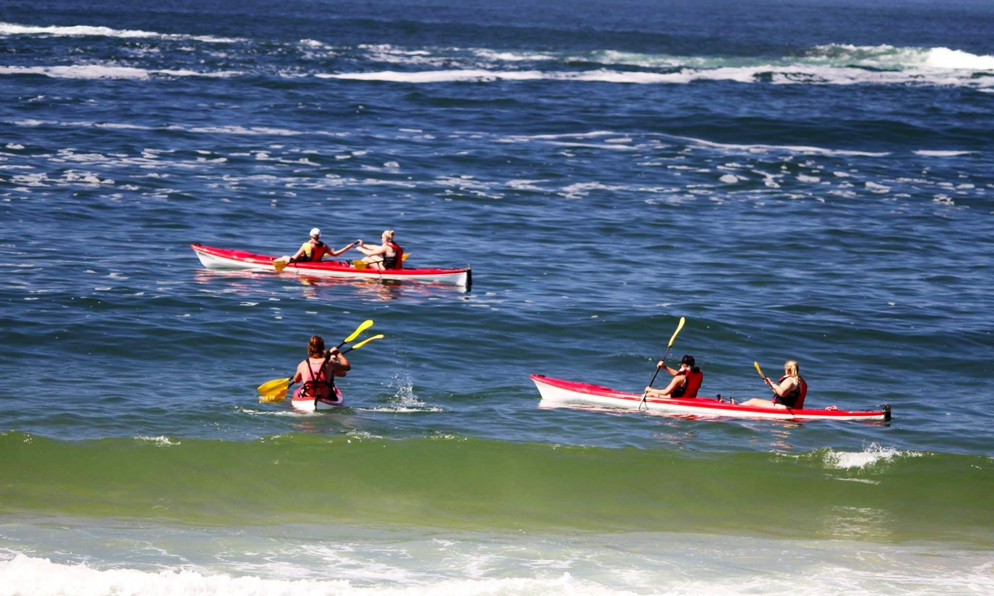 Sea Kayaking Guided Trips in Plettenberg Bay