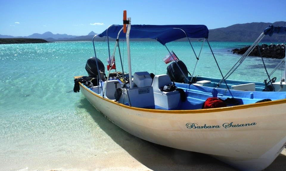 Go Fishing In Loreto, Baja California Sur