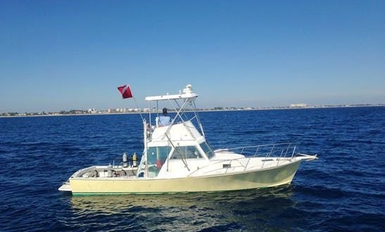 Dive Boat Charter In Boynton Beach, Florida