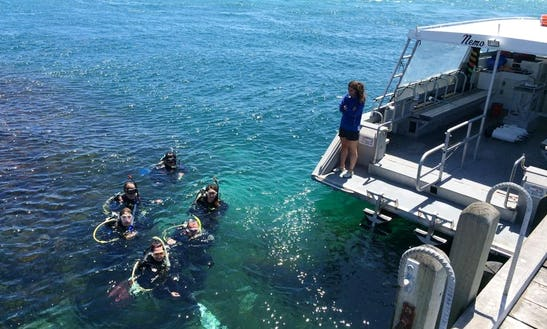 Hire Passenger Boat Diving Trips In Camberwell, Australia