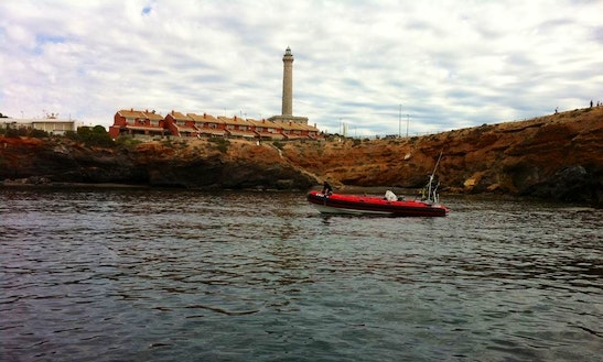Red Rib Diving Trips & Padi Courses In Cabo De Palos