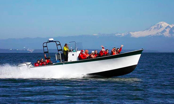 Center Console Whale Watching Tours & Charter in Cowichan Bay