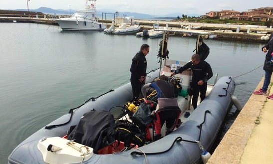 Diving In Golfo Aranci, Italy