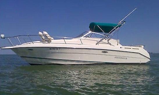 Boats Rental