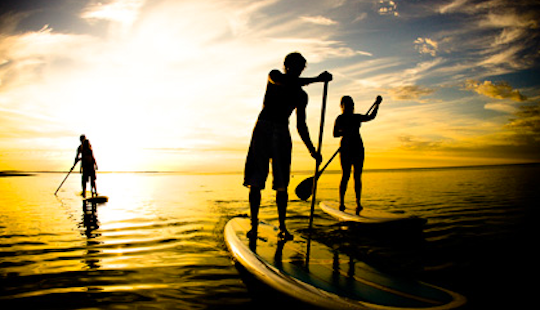 Paddleboard Rental & Lessons In Saint Pete Beach, Florida