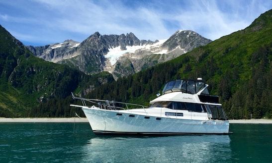 44ft Motor Yacht Rental In Seweard, Alaska