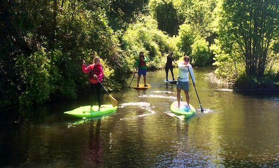 Sup Rental, Trips & Lessons In Puerto Varas
