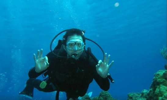 Discover Scuba Diving In Cancún