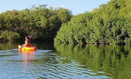 Unforgettable Kayak Tour In Nosara, Costa Rica