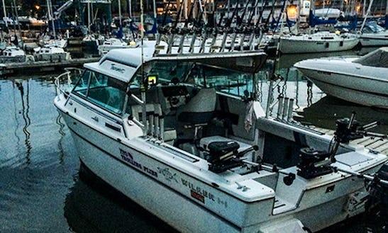 Charter Fishing Trips In Oakville On. Canada