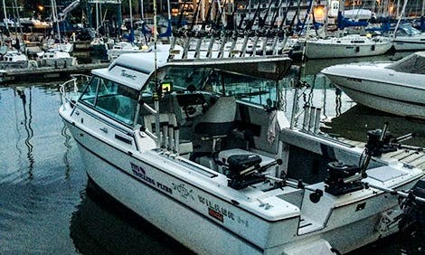 Charter Fishing Trips in Oakville On. Canada