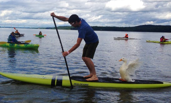 Guided Sup Tour On Spring Lake