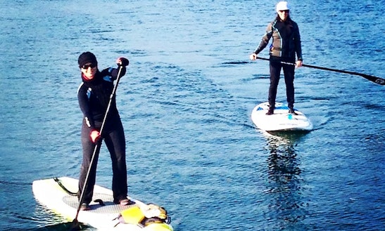 Paddleboard Rental & Lessons In Southampton, New York