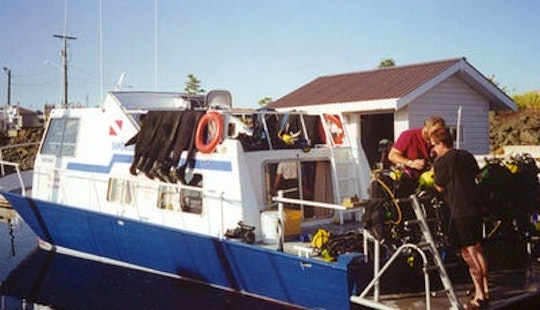 Scuba Diving In Campbell River
