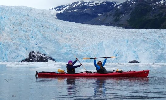 Guided Sea Kayak Trips In Seward