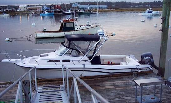 Grady White Cuddy Cabin Boat Charter In Wells, Maine