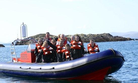 Boat Trips In Kerry