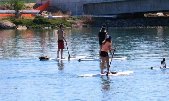 Paddleboard Rental In San Diego
