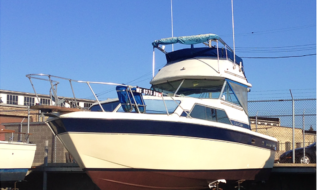 30 39 sport fisherman charter in chicago illinois getmyboat for Chicago fishing charters