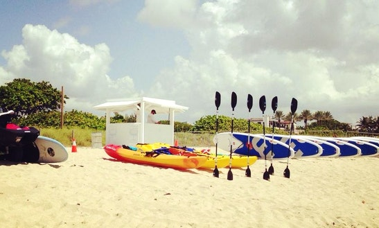 Best Kayak Rental In Key Biscayne, Florida