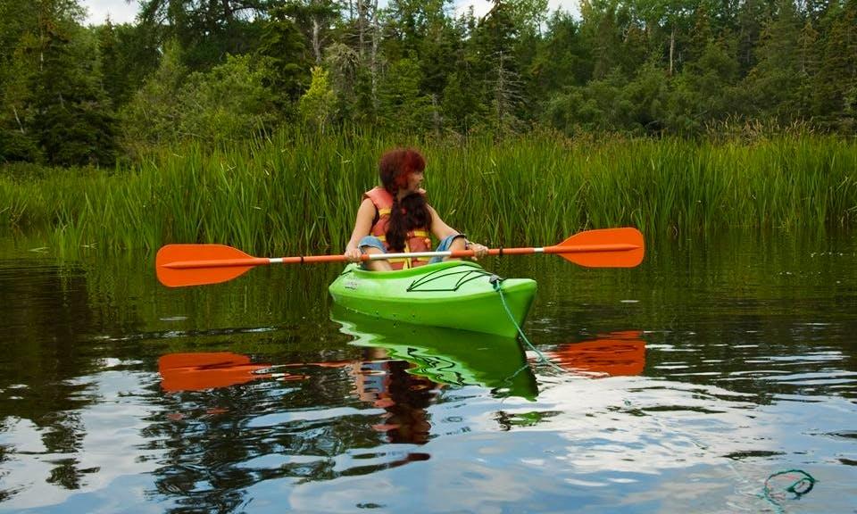 Kayak Rental On Morell River