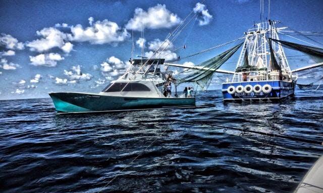 Fishing Charter On 47' Custom Burdge Sportfish Yacht In Grand Isle, Louisiana