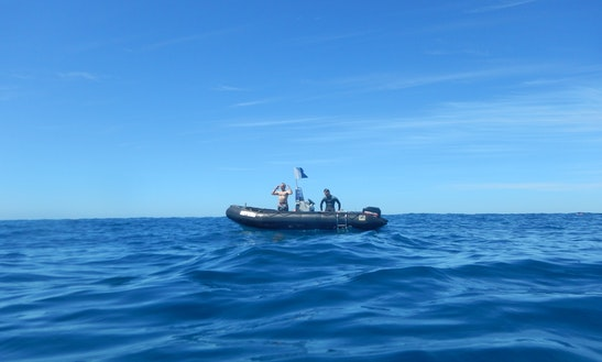 Commercial Rib Charter Boat For Rent In Blairgowrie
