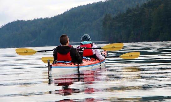 Kayak Tours On Pender Island