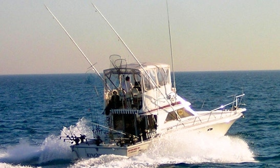 38' Sport Fisherman Charter In Chicago, Illinois